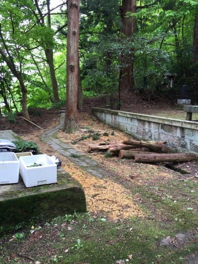 shiroyama1655 (9)