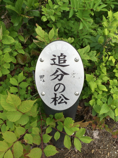 hakama16528 (43)
