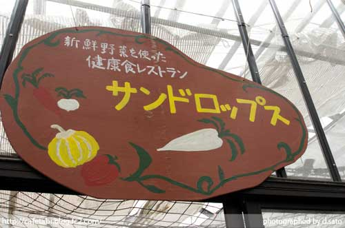 千葉県 大多喜町 ハーブガーデン ランチ サンドロップス 夏休み 旅行 自然 田舎 ハーブアイランド 店内 12