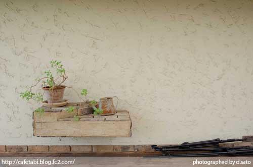 千葉県 大多喜町 ハーブガーデン ランチ サンドロップス 夏休み 旅行 自然 田舎 ハーブアイランド 店内 13