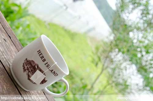 千葉県 大多喜町 ハーブガーデン ランチ サンドロップス 夏休み 旅行 自然 田舎 ハーブアイランド 料理 02