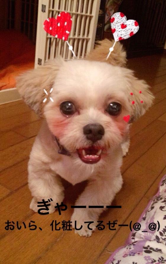 fc2blog_20160824161103306.jpg