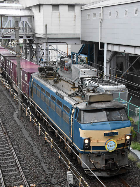 ef6633_tsurumi_160919.jpg
