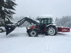 ChE7OhbU8AARオーストリア、ケルンテン州、深雪35センチ