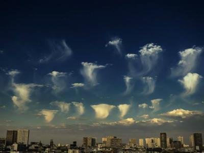 13516396_13481フランス、パリでクラゲ雲 By Ece Ekinel