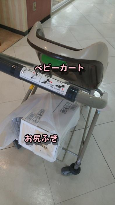 DSC_1440.jpg