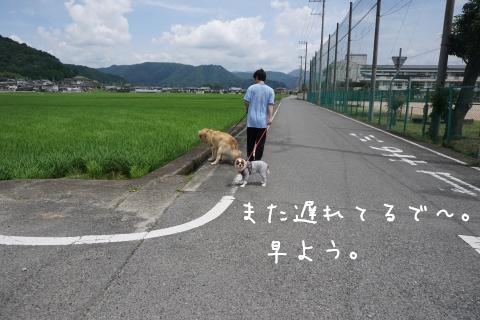 DSC03120.jpg