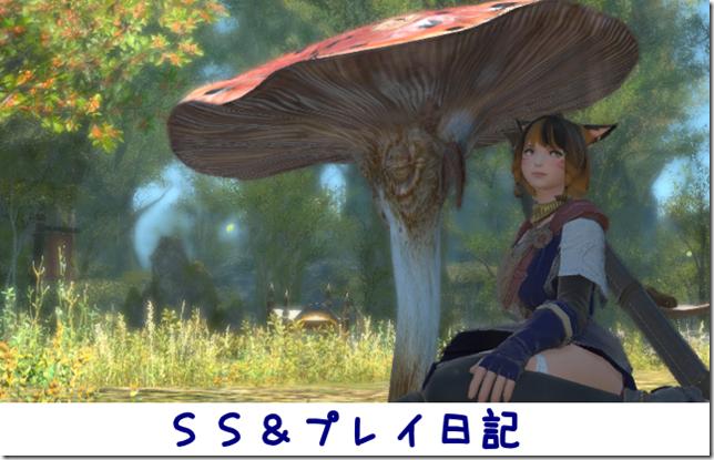FF14SS&プレイ日記