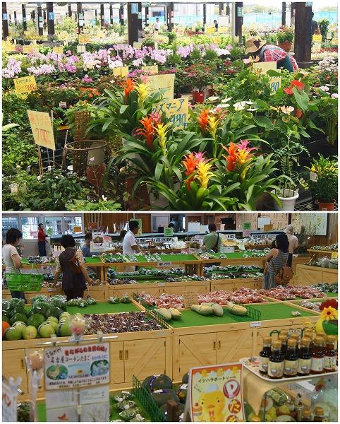 160902花市場