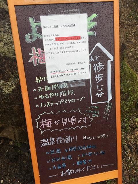 梅林公園 梅まつり 2016 1