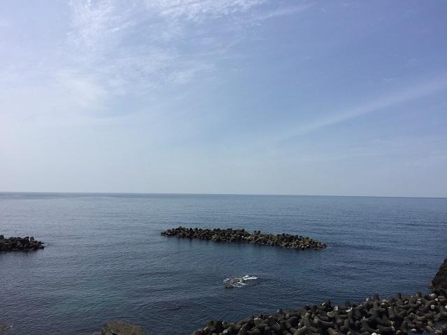 鶴岡市立加茂水族館 2016 2