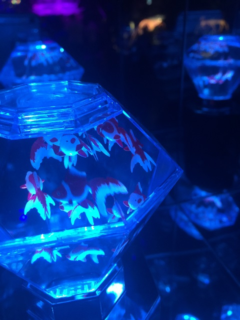 アートアクアリウム 2016 ~江戸・金魚の涼~ ナイトアクアリウム7