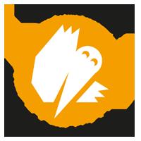 White_Ravens_2014_logo2.png
