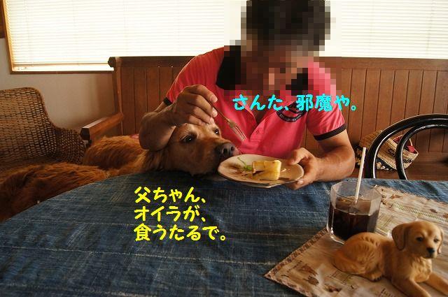 DSC05608.jpg