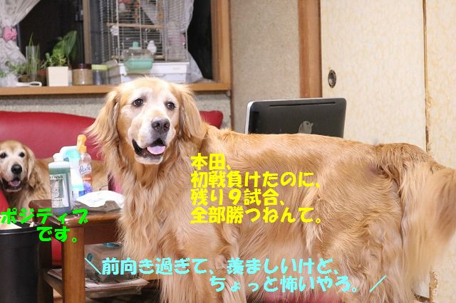 IMG_2328.jpg