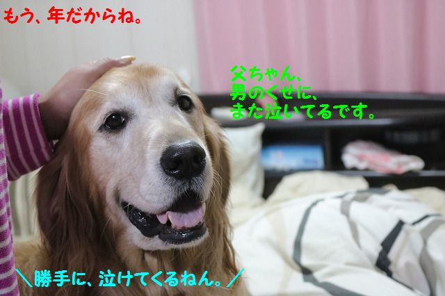IMG_5590a.jpg