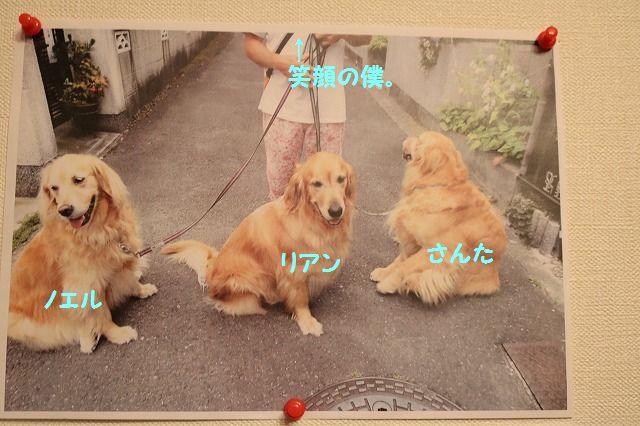 IMG_5901.jpg