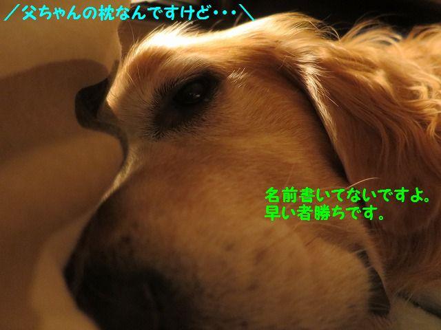 IMG_8914.jpg