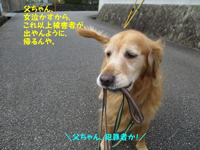 IMG_9014.jpg