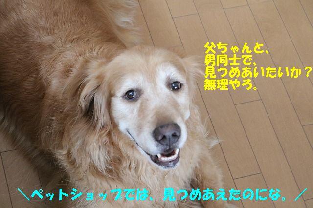 IMG_9656.jpg