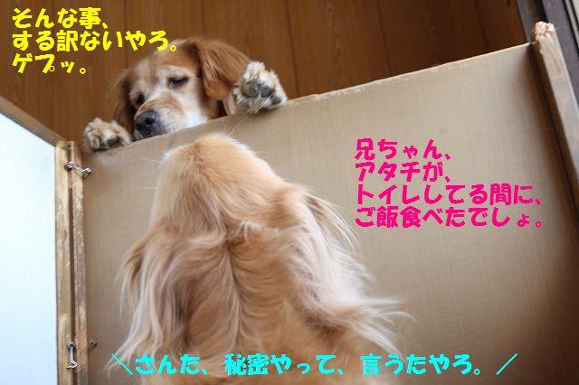 IMG_9855.jpg