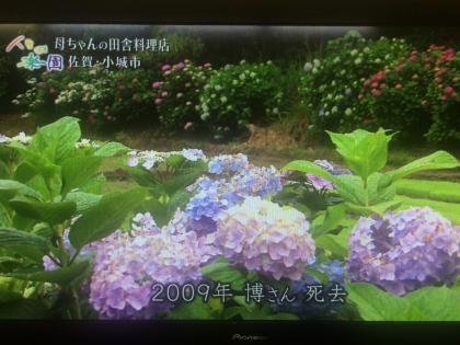 IMG_4702_convert_20160706215911.jpg