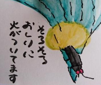 _20160623_155948(1)_convert_20160623163444.jpg