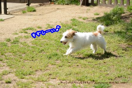 160414_yuasa3.jpg