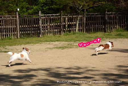 160414_yuasa5.jpg