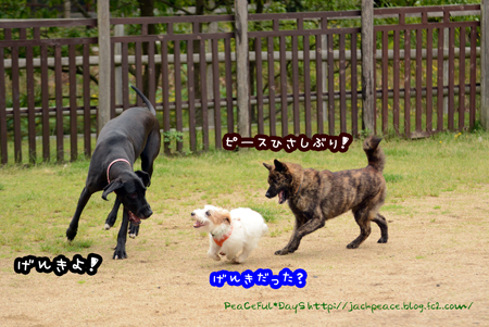 160427_yuasa.jpg