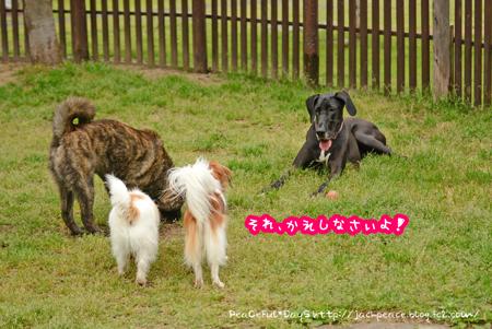 160427_yuasa5.jpg