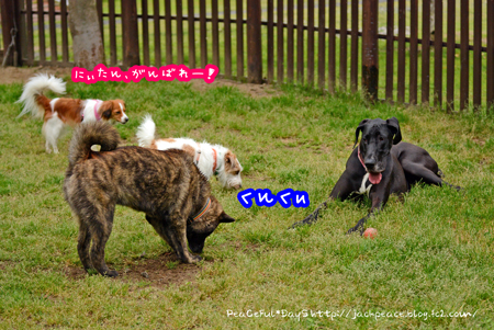 160427_yuasa6.jpg