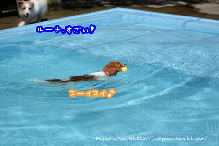 160513_yuasa4.jpg