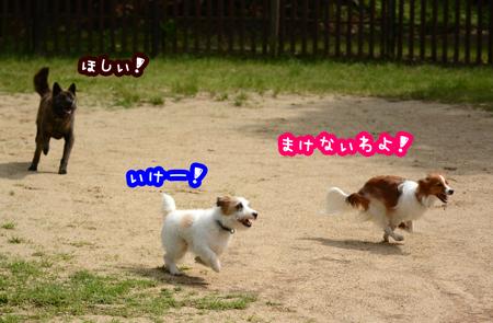 160517_yuasa.jpg
