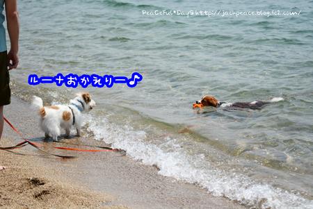 160522_kataonami2.jpg