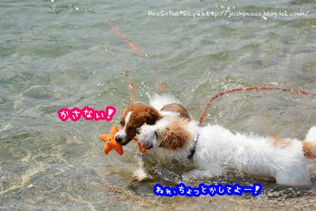 160522_kataonami3.jpg
