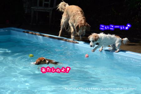 160610_yuasa2.jpg