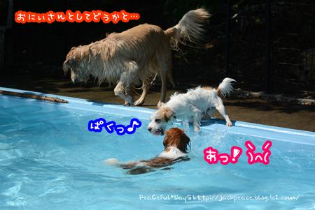 160610_yuasa3.jpg