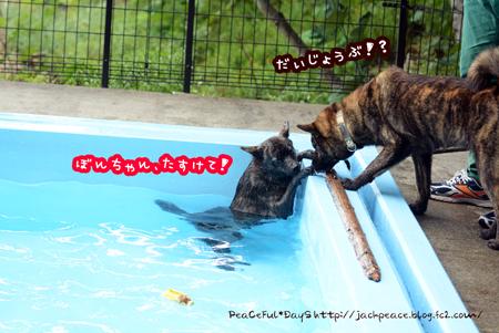 160615_yuasa8.jpg