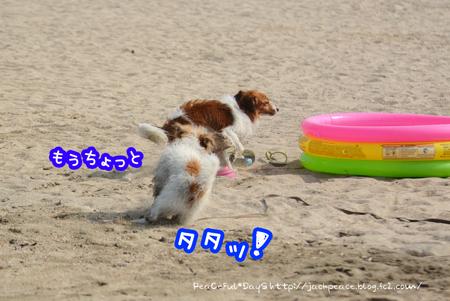 160803_umi12.jpg