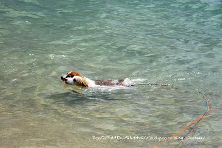 160906_swim.jpg