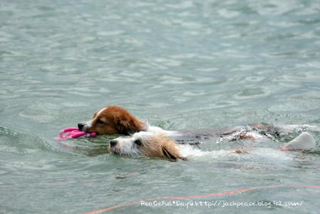 160906_swim1.jpg