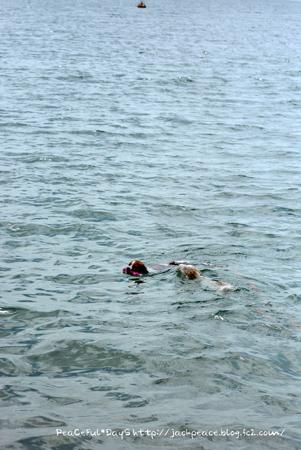 160906_swim3.jpg