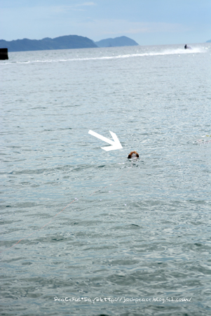 160906_swim8.jpg