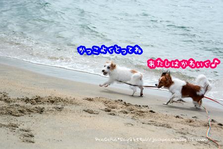 160906_umi6.jpg