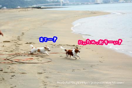 160930_umi.jpg