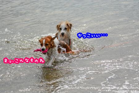 161004_umi10.jpg