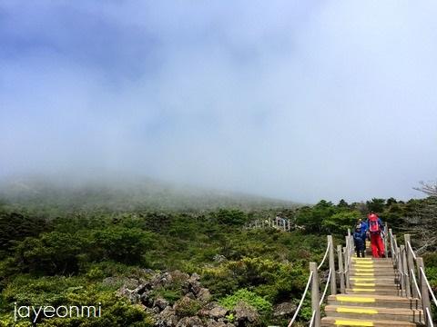 済州島_ハルラ山_2016年6月 (8)