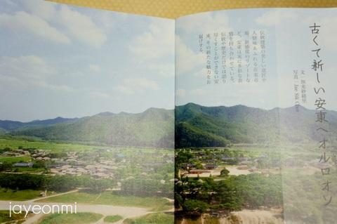 安東_GB_報告会_慶尚北道_blog (5)