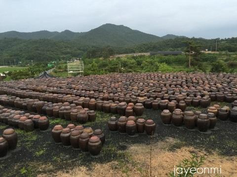 安東_GB_報告会_慶尚北道_blog (8)